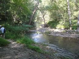 summer stream